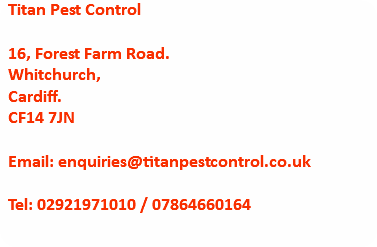 Titan Pest Control 16, Forest Farm Road. Whitchurch, Cardiff. CF14 7JN Email: enquiries@titanpestcontrol.co.uk Tel: 02921971010 / 07864660164